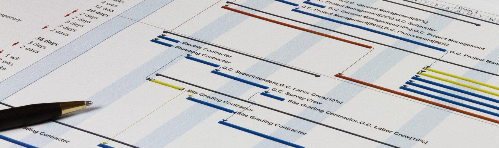 Project Gant Graph